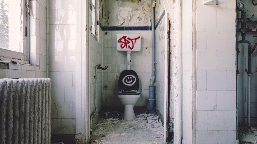 10 feiten over het toilet